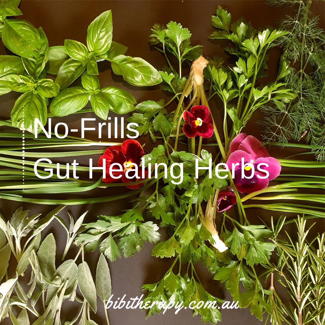 BIBITherapy_Gut_Healing_Herbs